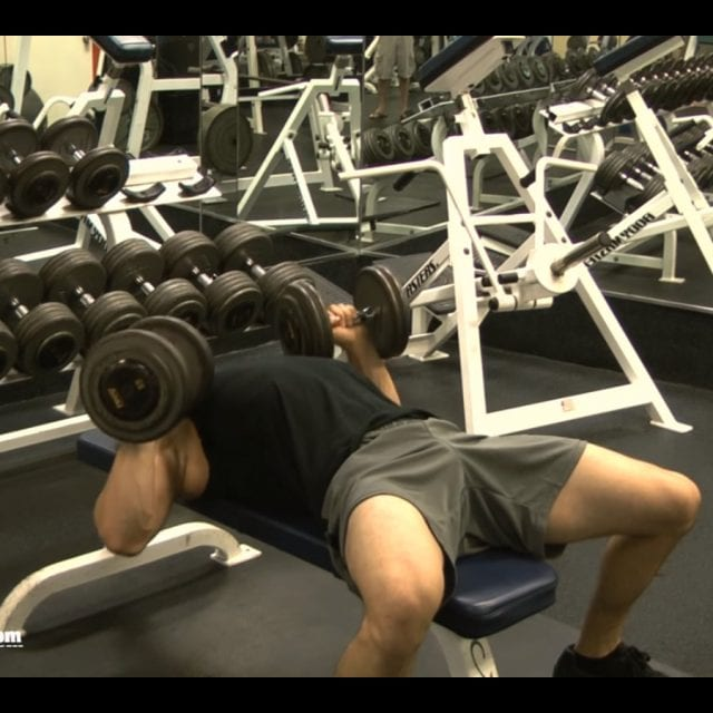 Dumbbell Bench Press End