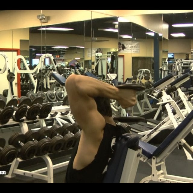 Dumbbell One Arm Tricep Extension End