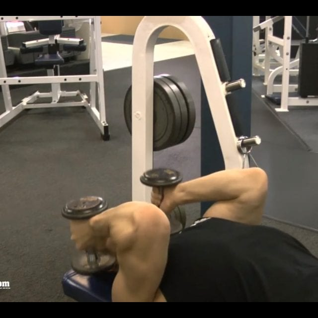 Lying Dumbbell Tricep Extension End