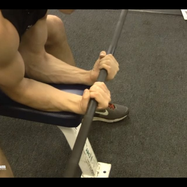 Seated Barbell Wrist Curl End