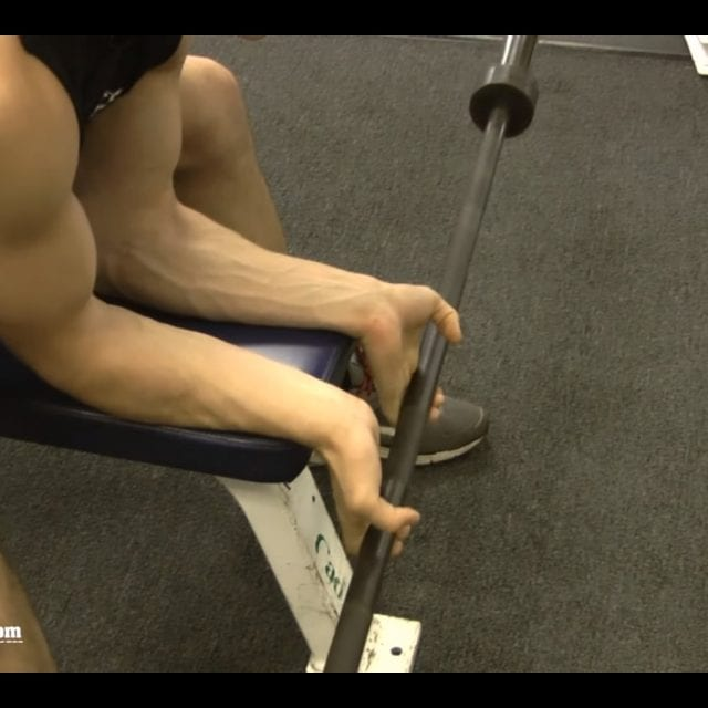 Seated Barbell Wrist Curl Start