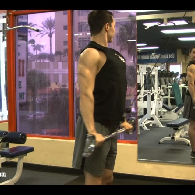 Straight Arm Pulldown End