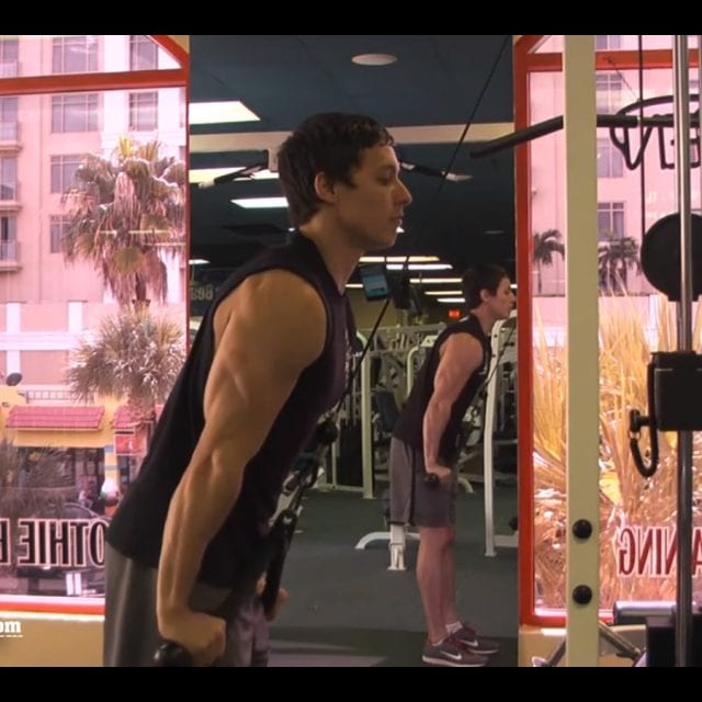 Tricep Pushdown-Rope Attachment End