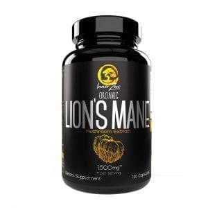 inner zen lion's mane