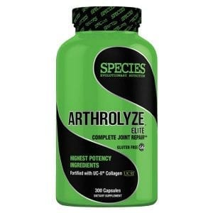 SPECIES Nutrition Arthrolyze